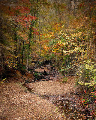 Creek Bed In Autumn - Fall Landscape Poster
