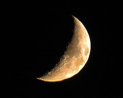 Cresent Moon Poster