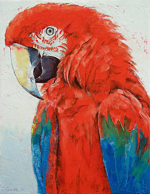 Crimson Macaw Poster by Michael Creese