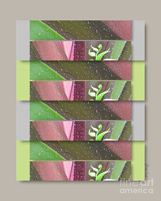 Poster featuring the photograph Crinum Lily Collage3 by Darla Wood