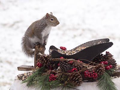 Critter Christmas Poster