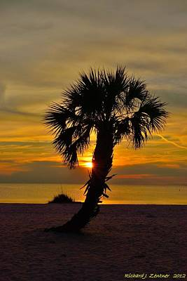 Crooked Palm Sunset Poster by Richard Zentner