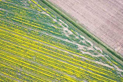 Crop Fields Poster