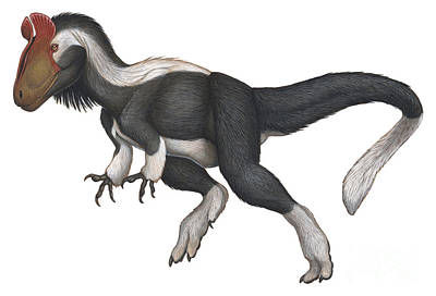 Cryolophosaurus, A Large Theropod That Poster by H. Kyoht Luterman