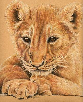 Poster featuring the drawing cub by Heidi Kriel