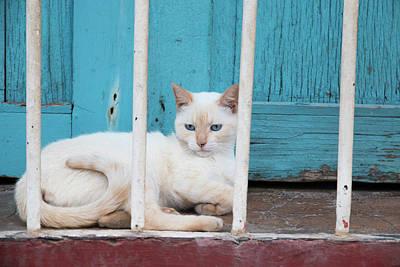 Cuba, Trinidad Poster