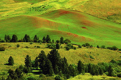 Cultivation Patterns In The Palouse Poster by Michel Hersen