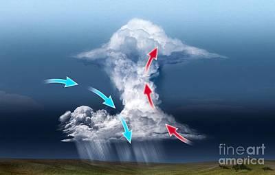Cumulus Thundercloud, Diagram Poster by Claus Lunau