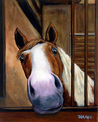 Curious Paint Horse Poster by Dottie Dracos