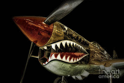 Curtiss P40 Warhawk  ... Poster by Chuck Caramella