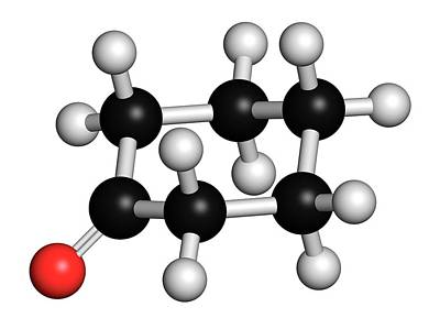 Cyclohexanone Organic Solvent Molecule Poster by Molekuul