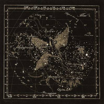 Cygnus Constellations, 1829 Poster
