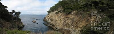 Cypress Cove Panorama Poster