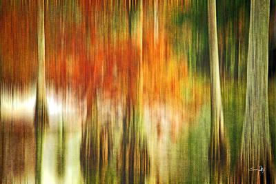 Cypress Pond Poster by Scott Pellegrin