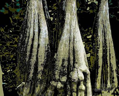 Cypress Three Poster by Sally Simon