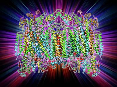 Cytochrome C Oxidase Molecule Poster by Laguna Design