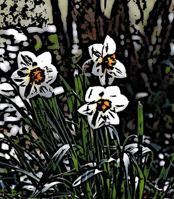 Poster featuring the digital art Daffodil by David Lane