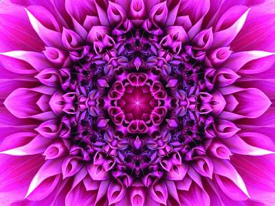 Dahlia Pink Star Mandala Poster