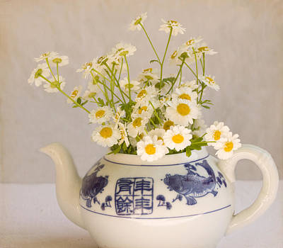 Poster featuring the photograph Daisies In A Teapot by Peggy Collins