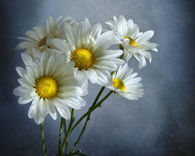 Daisy Bouquet Poster by Ann Lauwers