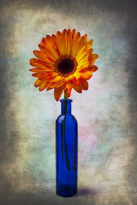 Daisy In Blue Vase Poster by Garry Gay