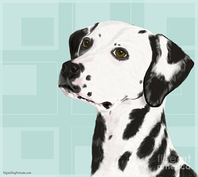 Dalmatian With A Dreamy Look Poster