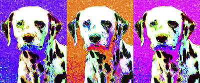 Dalmation Dog Three 20130125 Poster by Wingsdomain Art and Photography