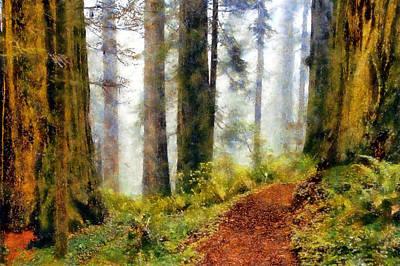 Damnation Creek Trail Poster by Kaylee Mason