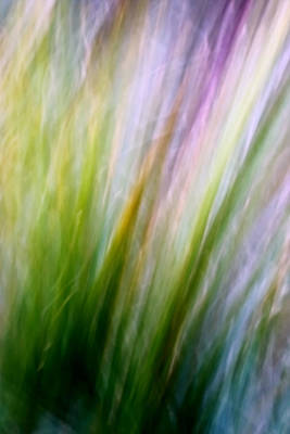Dancing Grass Poster by Mah FineArt
