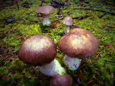 Dancing Mushrooms Poster by John K Woodruff