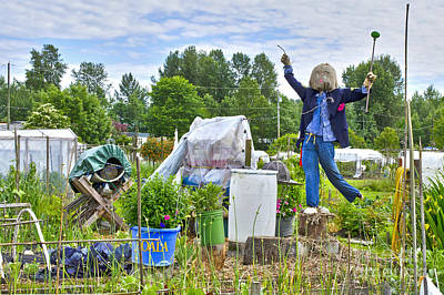 Poster featuring the photograph Dancing Scarecrow In The Garden by Maria Janicki