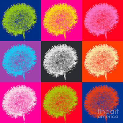 Dandelion Pop Poster by Emily Kay