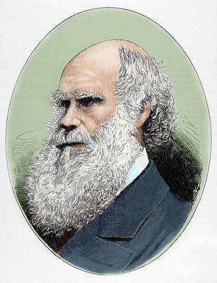 Darwin, Charles Robert (1809-1882 Poster by Prisma Archivo
