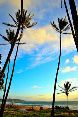 Dawn And Palms Kauia - Hawaii Poster