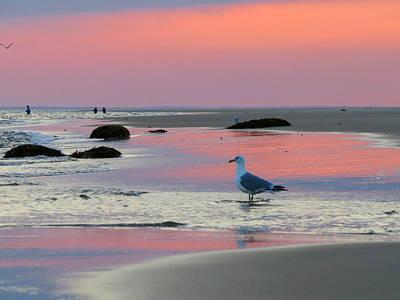 Dawn In Pink Poster by Dianne Cowen
