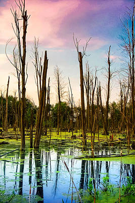 Poster featuring the photograph Daylight In The Swamp by Lars Lentz