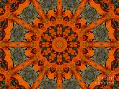 Daylily Orange Mandala Poster by MM Anderson