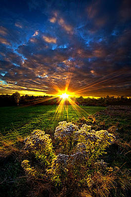 Days Gone By Poster by Phil Koch