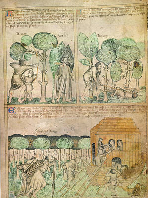 Death Of Cain; Entering The Ark Poster by British Library
