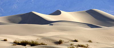 Death Valley Sand Dunes Poster by Amelia Racca