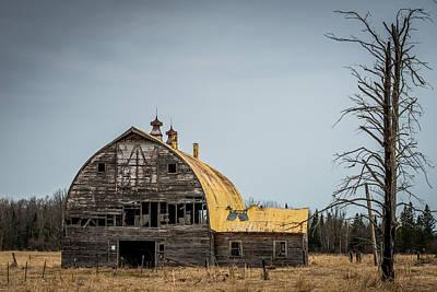 Decaying Barn Poster by Paul Freidlund