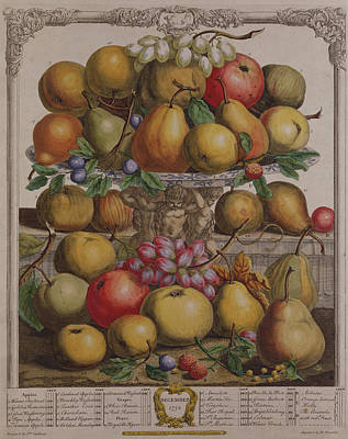 December, From Twelve Months Of Fruits, By Robert Furber C.1674-1756 Engraved By Henry Fletcher Poster