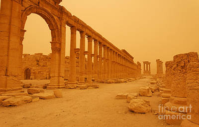 Decumanus The Colonnaded Street At Palmyra Syria In The Light After A Sandstorm Poster by Robert Preston