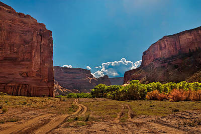 Deep In Canyon De Chelly Poster by Bob and Nadine Johnston