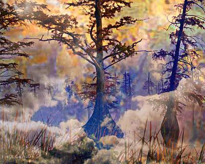 Deep In The Swamp Sunrise Poster by J Larry Walker