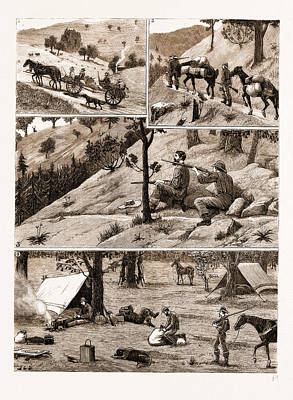 Deer Hunting In The Coast Range Mountains Poster