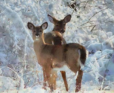 Deer In The Snow Poster by Elizabeth Coats
