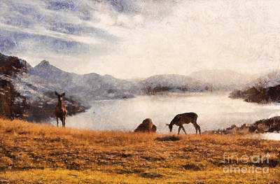 Deer On Mountain At Dusk Poster by Pixel Chimp