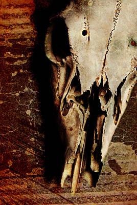 Deer Skull Poster by Chastity Hoff