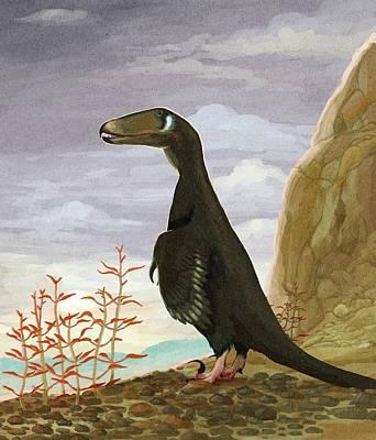 Deinonychus Dinosaur Poster by Nemo Ramjet